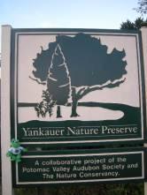 brc_rest_stop_yankauer NP